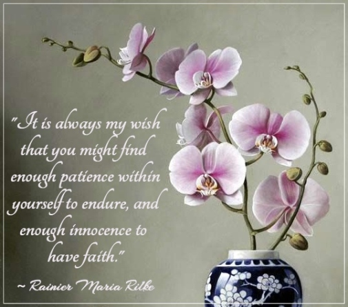 orchidinpot-endure-faith