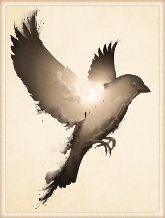 wild-bird-flight_border