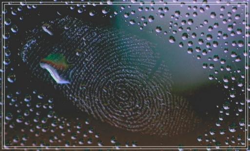 fingerprint - unique